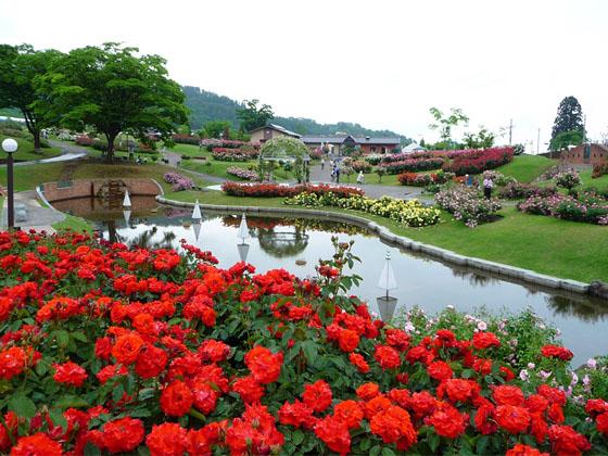 higashizawa_baraen.jpg