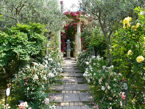 hirakata park rosegarden.jpg