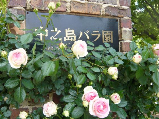 nakanoshima_rose garden.jpg