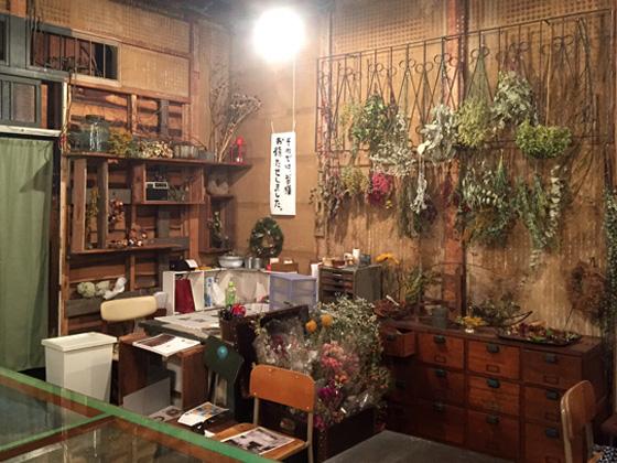 http://www.noibara.net/landscape/img/dryflower_1.jpg