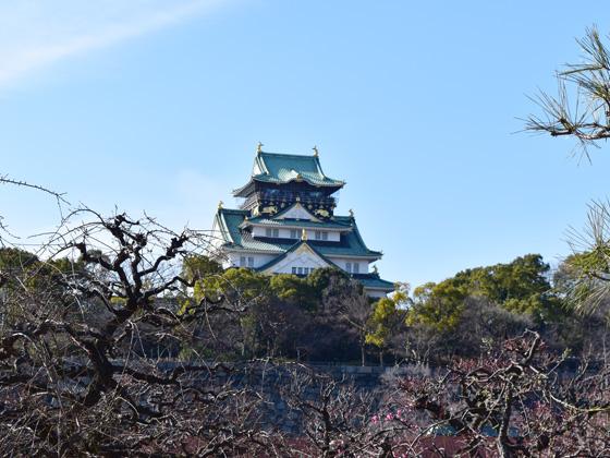 http://www.noibara.net/landscape/img/jp2.jpg
